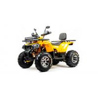Квадроцикл Motoland 200 Wild Track X