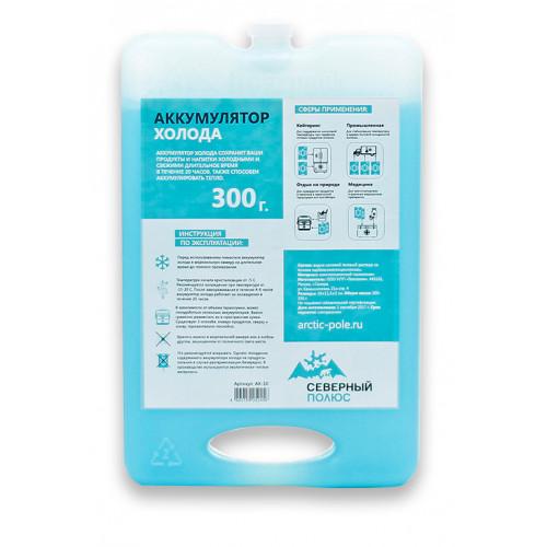 Аккумулятор холода для термосумки АХ-10 (300 г.)